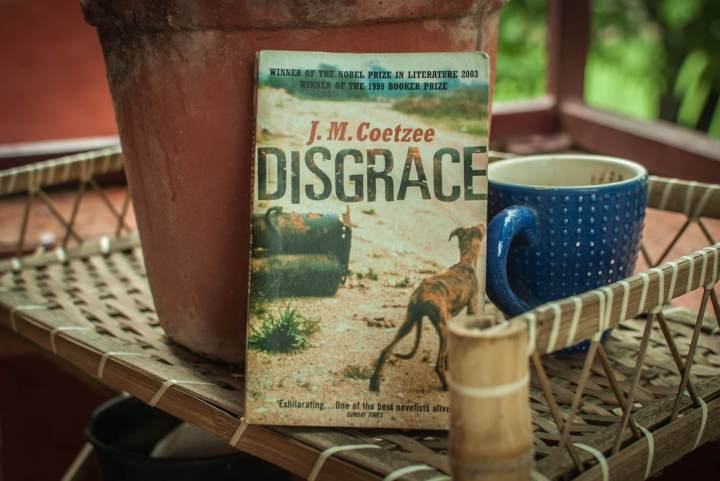 Disgrace-cover